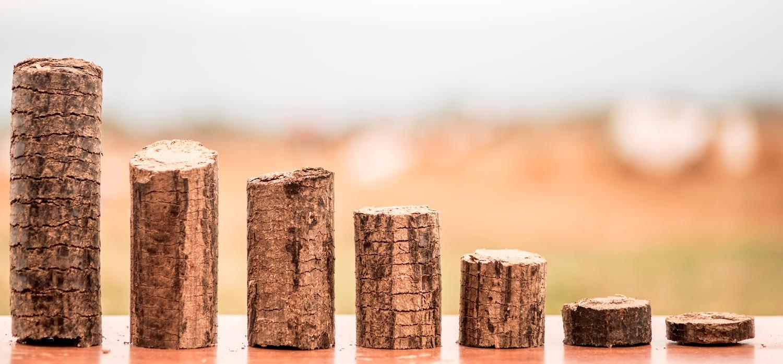 Lejan Energy briquettes